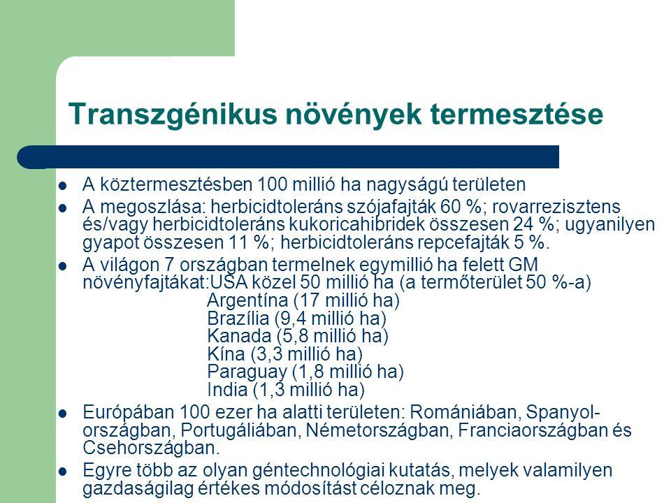Transzgénikus növények termesztése A köztermesztésben 100 millió ha nagyságú területen A megoszlása: herbicidtoleráns szójafajták 60 %; rovarrezisztens és/vagy herbicidtoleráns kukoricahibridek összesen 24 %; ugyanilyen gyapot összesen 11 %; herbicidtoleráns repcefajták 5 %.