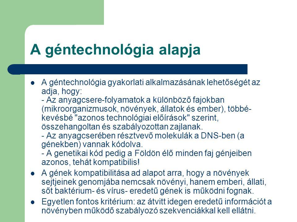 A géntechnológia alapja A géntechnológia gyakorlati alkalmazásának lehetőségét az adja, hogy: - Az anyagcsere-folyamatok a különböző fajokban (mikroor