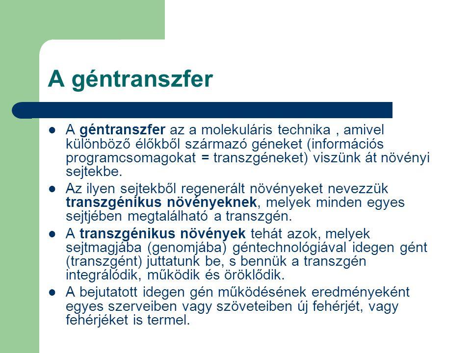 A géntranszfer A géntranszfer az a molekuláris technika, amivel különböző élőkből származó géneket (információs programcsomagokat = transzgéneket) viszünk át növényi sejtekbe.