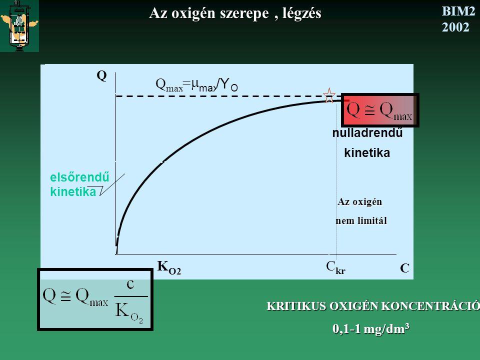 BIM2 2002 Az oxigén szerepe, légzés KRITIKUS OXIGÉN KONCENTRÁCIÓ 0,1-1 mg/dm 3