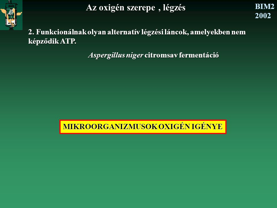BIM2 2002 Az oxigén szerepe, légzés 2. Funkcionálnak olyan alternatív légzési láncok, amelyekben nem képződik ATP. Aspergillus niger citromsav ferment