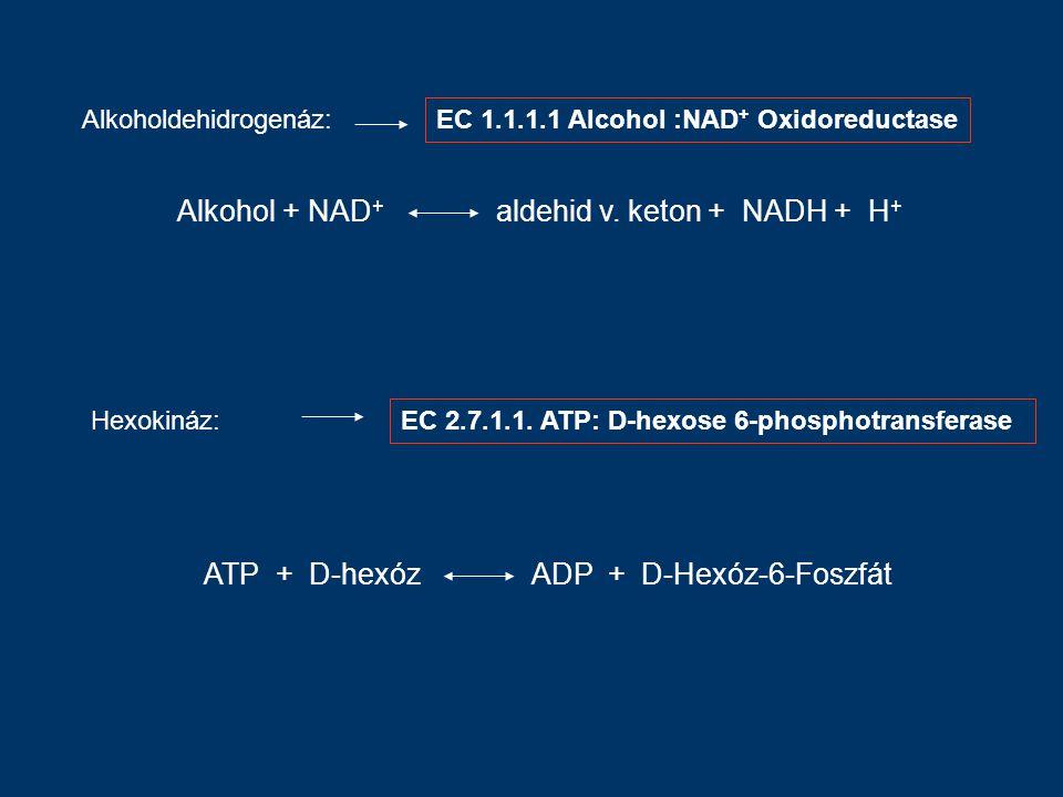 Alkoholdehidrogenáz: Alkohol + NAD + aldehid v.