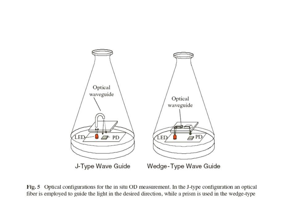Abluft Analyse einer Batch Fermentation CO 2 RQ O2O2 0 1 2 3 4 1015202530354045 RQ und %CO 2 in der Abluft 10 12 14 16 18 20 Zeit [hr] 22 %O 2 in der Abluft