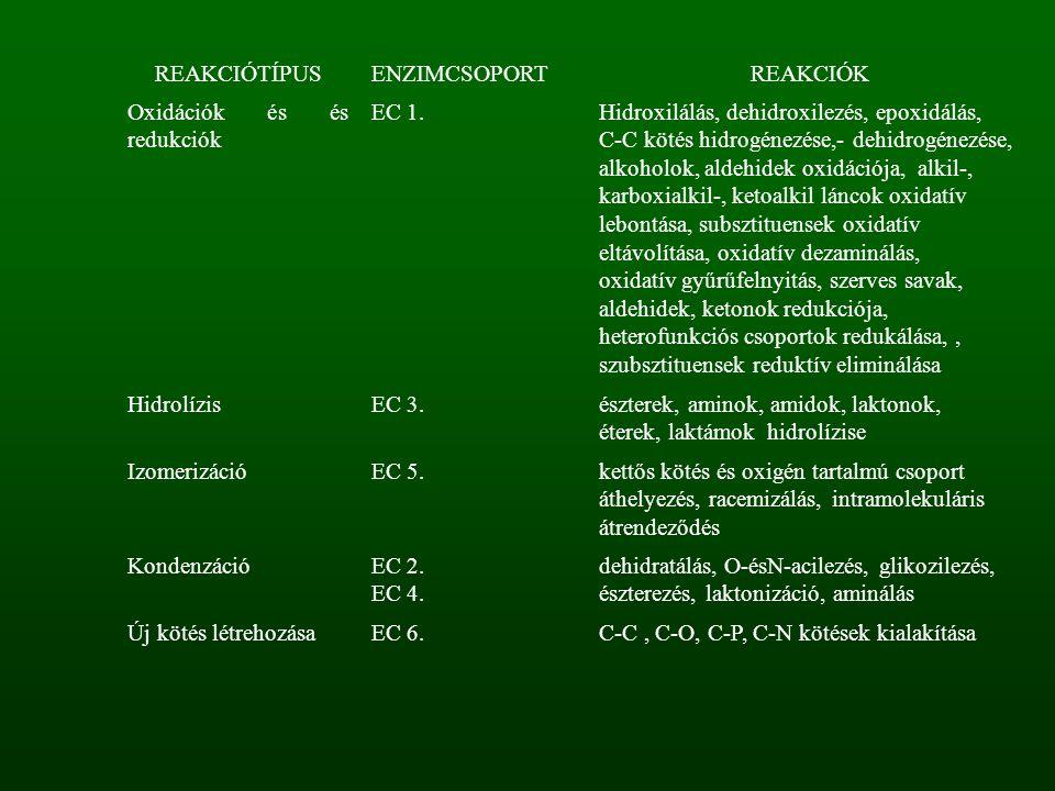 REAKCIÓTÍPUSENZIMCSOPORTREAKCIÓK Oxidációk és és redukciók EC 1.Hidroxilálás, dehidroxilezés, epoxidálás, C-C kötés hidrogénezése,- dehidrogénezése, a