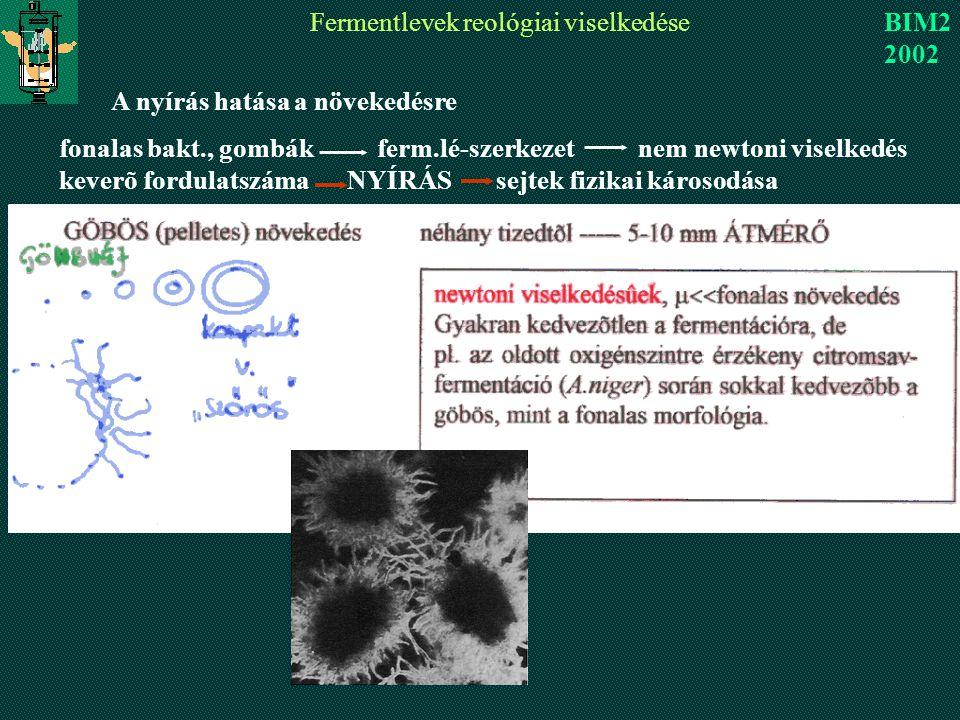 Fermentlevek reológiai viselkedése BIM2 2002 A nyírás hatása a növekedésre fonalas bakt., gombák ferm.lé-szerkezet nem newtoni viselkedés keverõ fordulatszáma NYÍRÁS sejtek fizikai károsodása