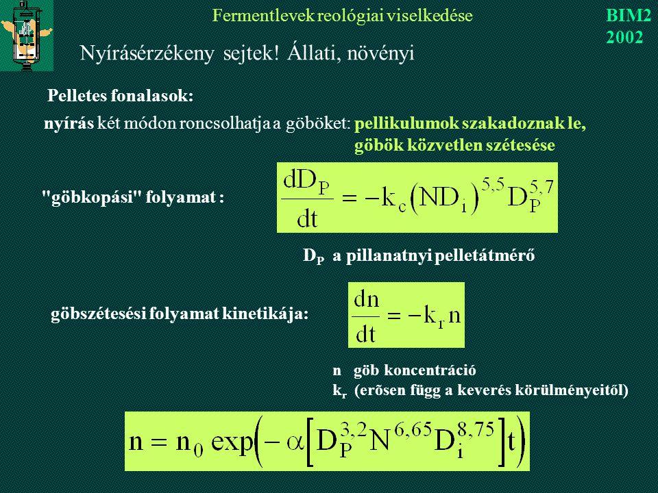 Fermentlevek reológiai viselkedése BIM2 2002 nyírás két módon roncsolhatja a göböket: pellikulumok szakadoznak le, göbök közvetlen szétesése göbkopási folyamat : D P a pillanatnyi pelletátmérő göbszétesési folyamat kinetikája: n göb koncentráció k r (erõsen függ a keverés körülményeitől) Nyírásérzékeny sejtek.