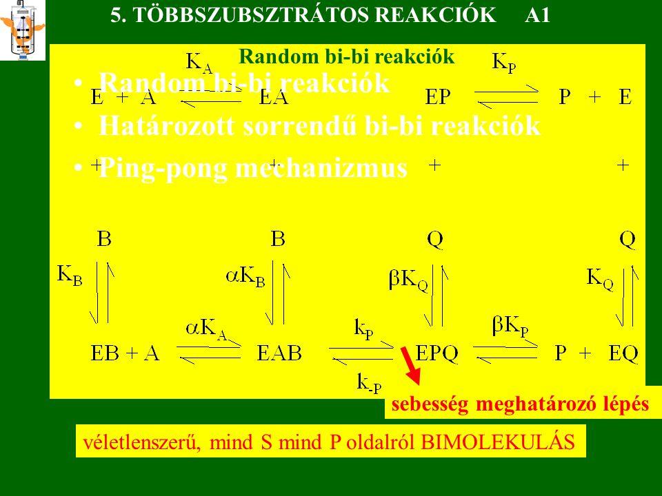 Random bi-bi reakciók Határozott sorrendű bi-bi reakciók Ping-pong mechanizmus 5.