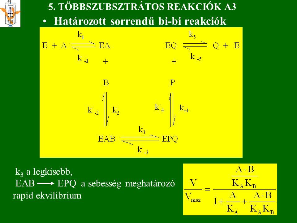 5. TÖBBSZUBSZTRÁTOS REAKCIÓK A3 Határozott sorrendű bi-bi reakciók k 3 a legkisebb, EAB EPQ a sebesség meghatározó rapid ekvilibrium