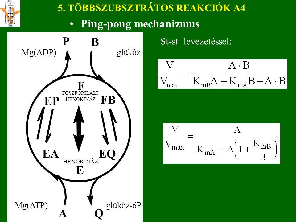 5. TÖBBSZUBSZTRÁTOS REAKCIÓK A4 Ping-pong mechanizmus St-st levezetéssel: E F EP EA FB EQ AQ P B Mg(ADP) glükóz Mg(ATP) glükóz-6P HEXOKINÁZ FOSZFORILÁ