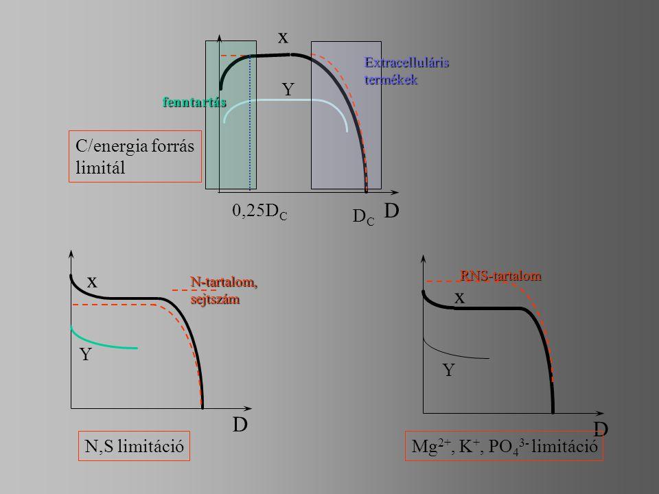 x D 0,25D C DCDC Y C/energia forrás limitál x D x D Y RNS-tartalom Y N,S limitáció Mg 2+, K +, PO 4 3- limitáció fenntartás Extracelluláristermékek N-
