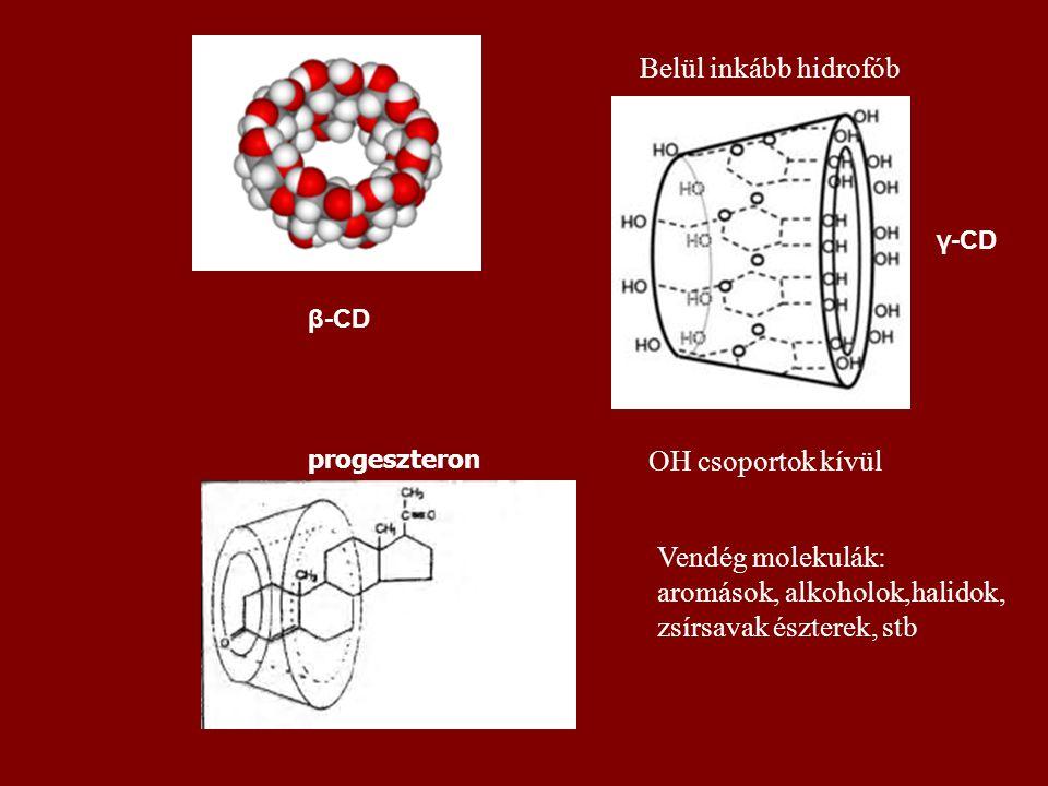 β-CD γ-CD Vendég molekulák: aromások, alkoholok,halidok, zsírsavak észterek, stb OH csoportok kívül Belül inkább hidrofób progeszteron