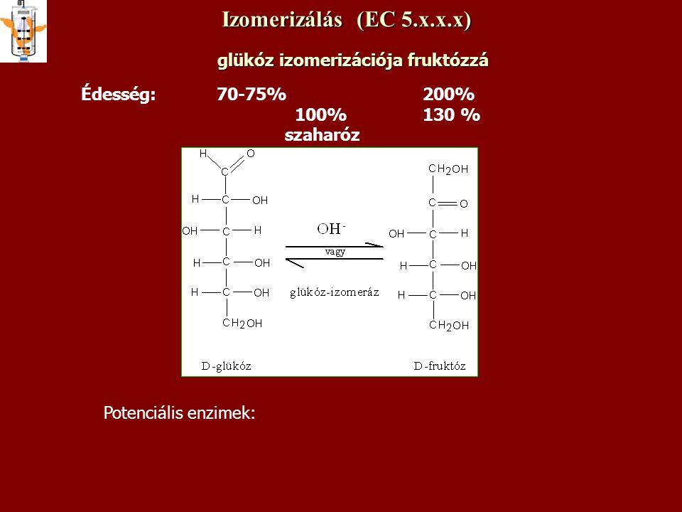 Izomerizálás (EC 5.x.x.x) glükóz izomerizációja fruktózzá Édesség: 70-75% 200% 100% 130 % szaharóz Potenciális enzimek: