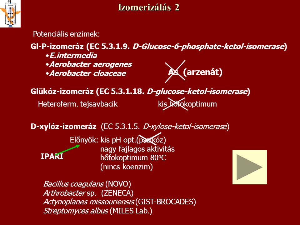 Izomerizálás 2 Potenciális enzimek: Gl-P-izomeráz (EC 5.3.1.9. D-Glucose-6-phosphate-ketol-isomerase) E.intermedia Aerobacter aerogenes Aerobacter clo