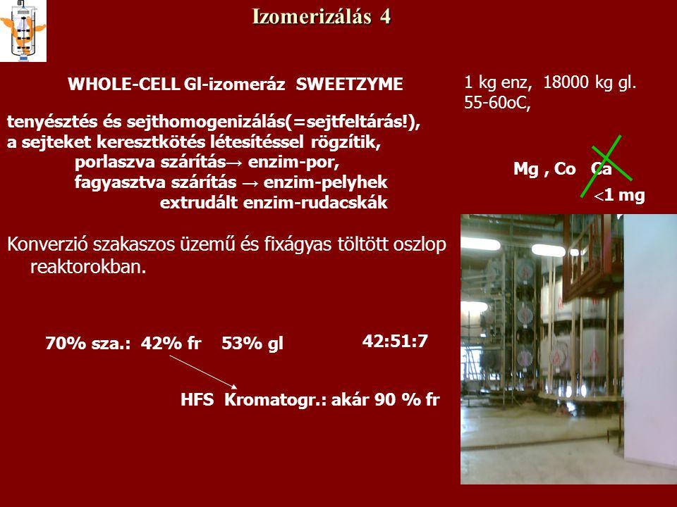 Izomerizálás 4 WHOLE-CELL Gl-izomeráz SWEETZYME tenyésztés és sejthomogenizálás(=sejtfeltárás!), a sejteket keresztkötés létesítéssel rögzítik, porlas