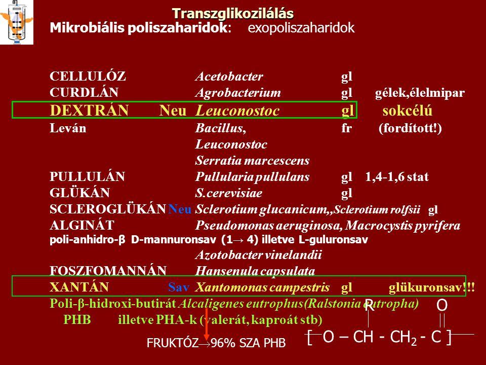 poliszaharidmikroorganizmusszerkezetfelhasználás cellulózAcetobacterlineáris β-(1→4)-glükánMikrofibrilláris élelmi rostként kurdlánAgrobacterium Alcaligenes faecalis lineáris β-(1→3)-glükán Gélek, élelmiszeripar pullulánAureobasidium pullulans, Pullularia pullulans lineáris 2*α-(1→4), α-1*(1→6)-glükán Erős rost- és filmképző (cellofán helyettesítő) szkleroglükánSclerotium rolfai, Sc.