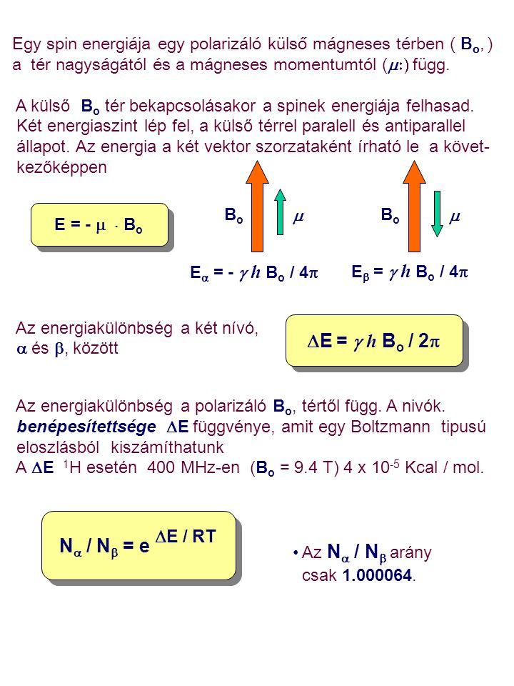 Egy spin energiája egy polarizáló külső mágneses térben ( B o, ) a tér nagyságától és a mágneses momentumtól (  függ. A külső B o tér bekapcsolása