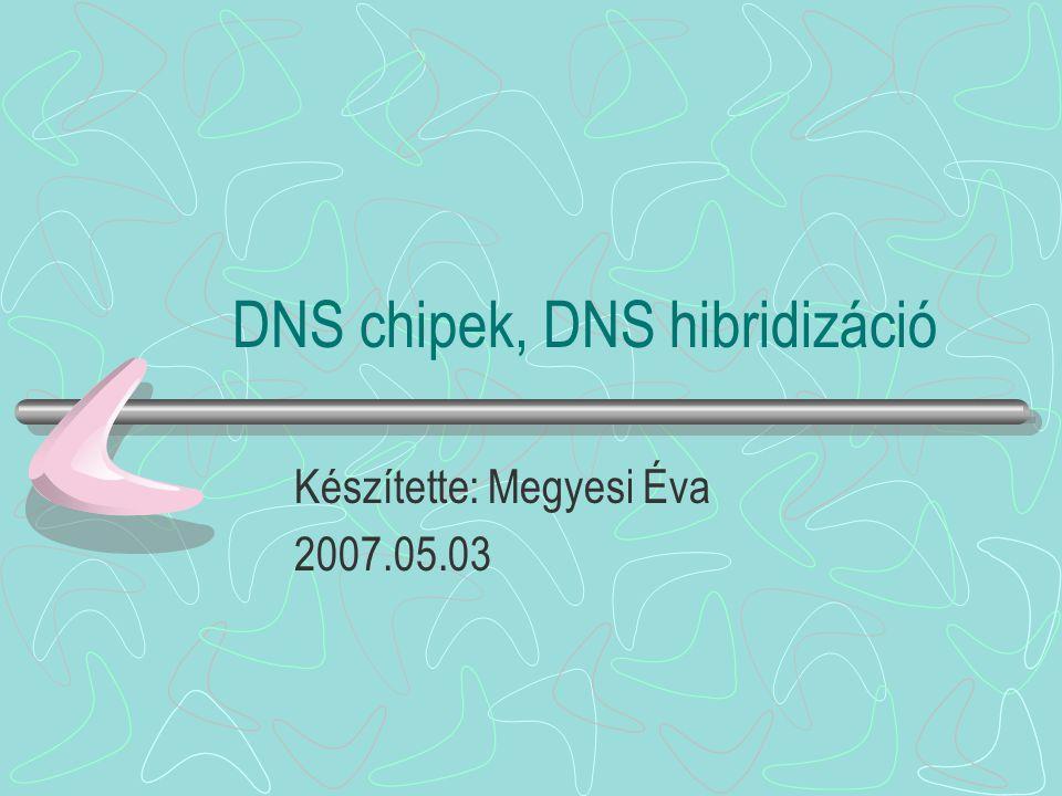 DNS chipek, DNS hibridizáció Készítette: Megyesi Éva 2007.05.03