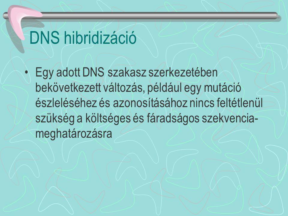 DNS hibridizáció Egy adott DNS szakasz szerkezetében bekövetkezett változás, például egy mutáció észleléséhez és azonosításához nincs feltétlenül szük