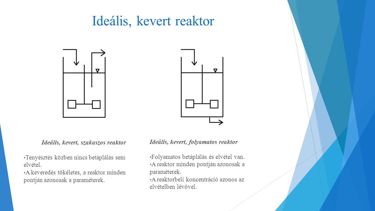 Ideális, kevert reaktor Ideális, kevert, szakaszos reaktor Tenyésztés közben nincs betáplálás sem elvétel. A keveredés tökéletes, a reaktor minden pon