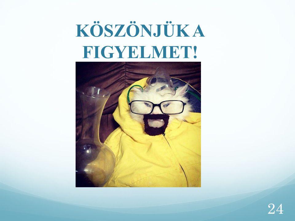 KÖSZÖNJÜK A FIGYELMET! 24
