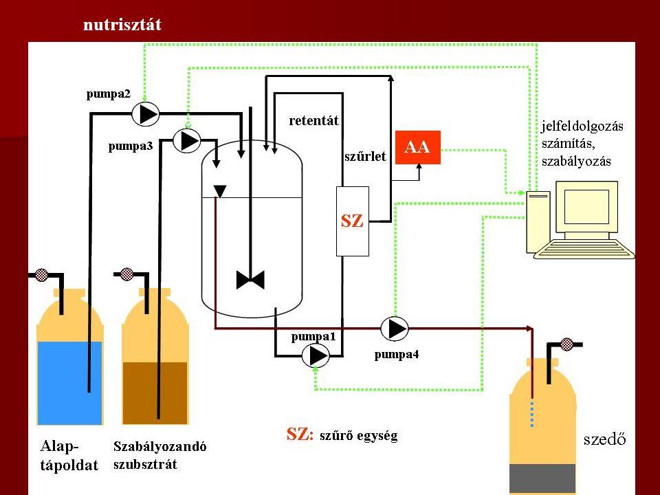 EGYÉB TENYÉSZTÉSI TECHNIKÁK BIM SB 2002 Félfolytonos fermentáció α.V térfogatot fejtünk le Félfolytonos r.