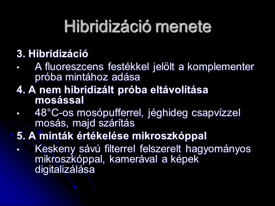 Hibridizáció menete 3. Hibridizáció A fluoreszcens festékkel jelölt a komplementer próba mintához adása A fluoreszcens festékkel jelölt a komplementer