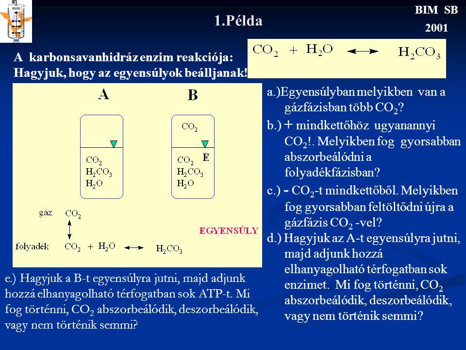 1.Példa BIM SB 2001 A karbonsavanhidráz enzim reakciója: Hagyjuk, hogy az egyensúlyok beálljanak.