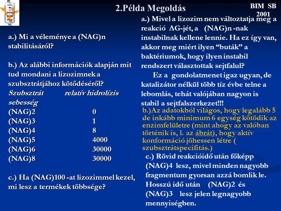 2.Példa Megoldás BIM SB 2001 a.) Mi a véleménye a (NAG)n stabilitásáról.