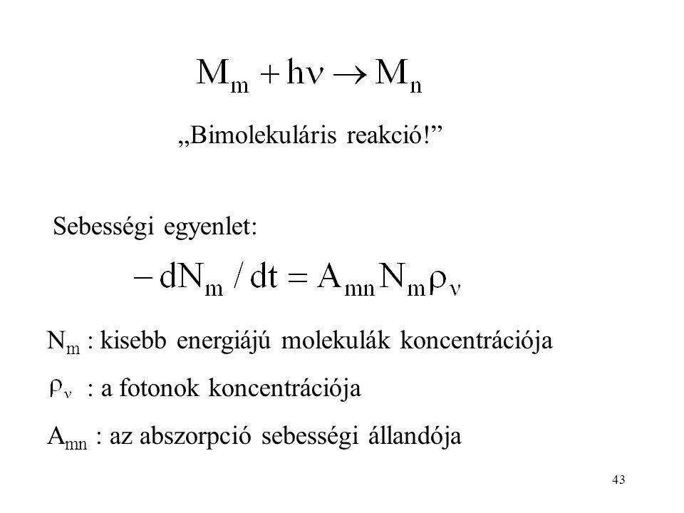 """Sebességi egyenlet: N m : kisebb energiájú molekulák koncentrációja : a fotonok koncentrációja A mn : az abszorpció sebességi állandója """"Bimolekuláris reakció! 43"""