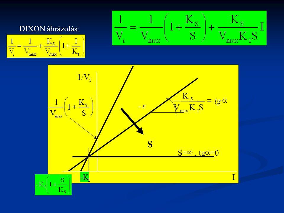 DIXON ábrázolás: 1/V i I        S K 1 V 1 S max S  tg SKV K Imax S S= , tg  =0 -K I