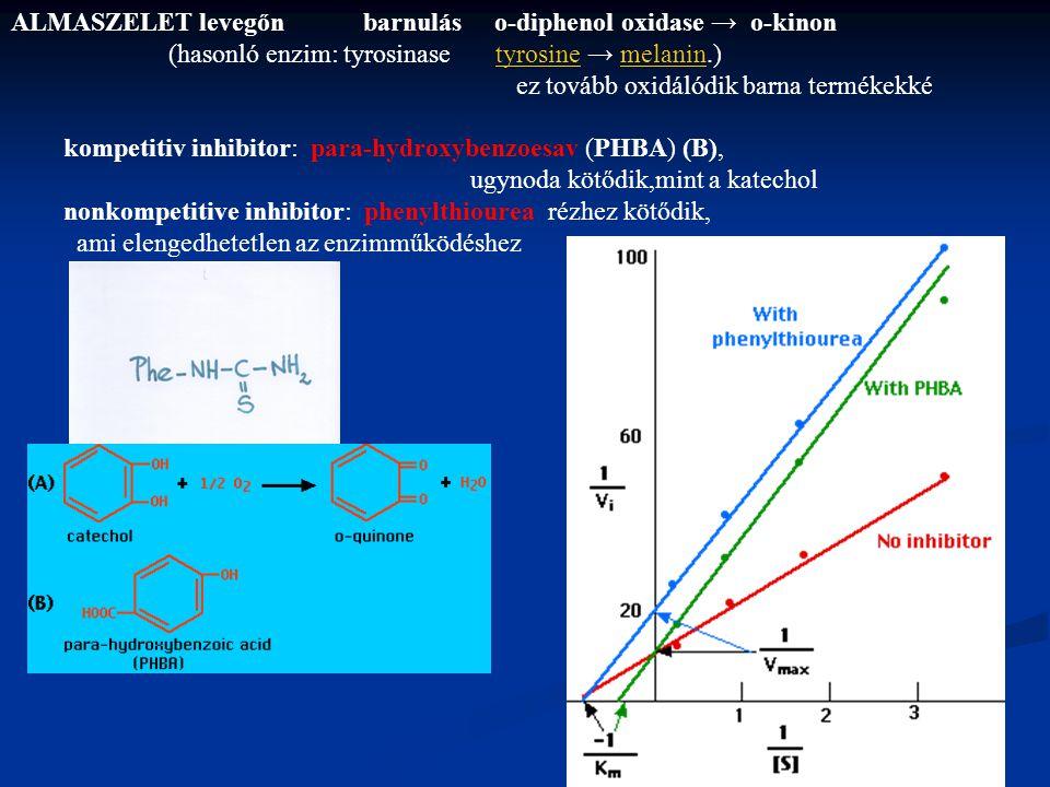 ALMASZELET levegőn barnulás o-diphenol oxidase → o-kinon (hasonló enzim: tyrosinase tyrosine → melanin.)tyrosinemelanin ez tovább oxidálódik barna ter