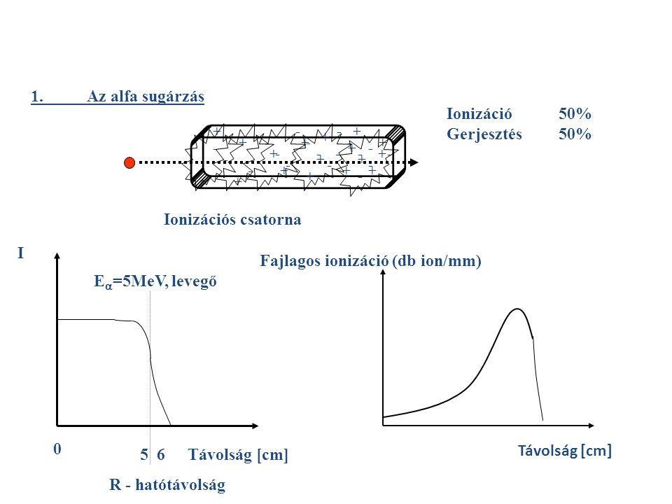 1.Az alfa sugárzás Ionizációs csatorna + - + + + ++ + + + + + + + + + + - - - - - - - - - - - - - - - -- I Távolság [cm] E  =5MeV, levegő 0 5 6 R - hatótávolság Fajlagos ionizáció (db ion/mm) Távolság [cm] Ionizáció 50% Gerjesztés50%