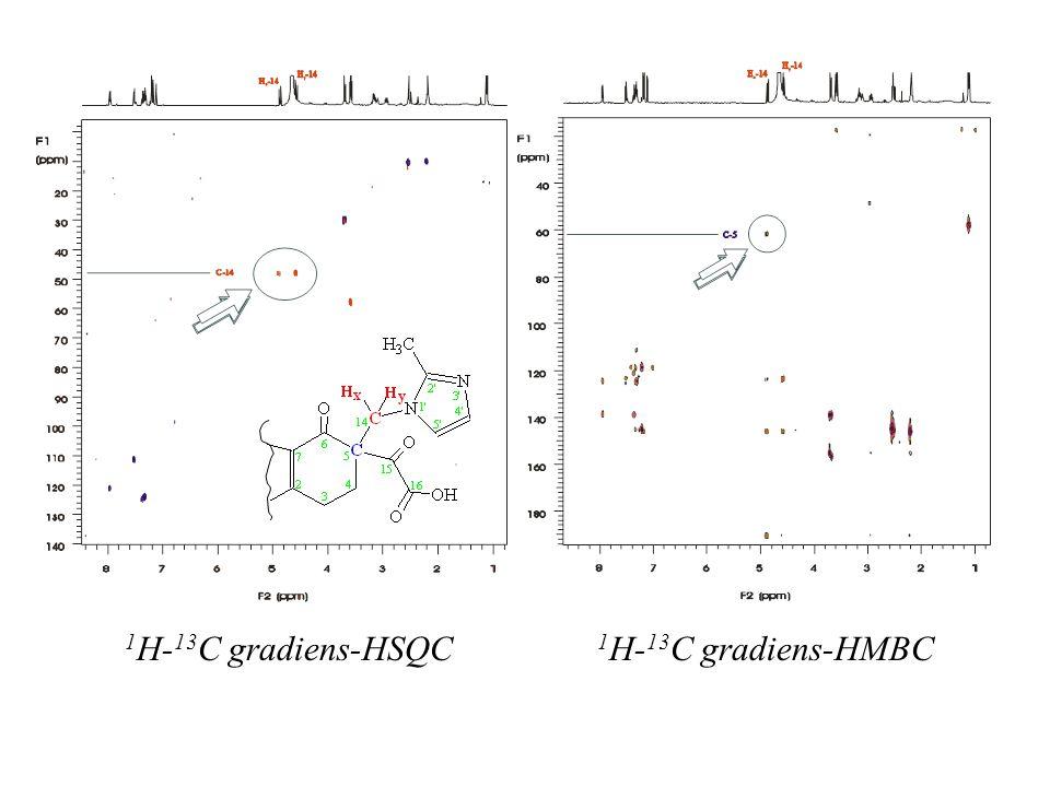 1 H- 13 C gradiens-HSQC 1 H- 13 C gradiens-HMBC