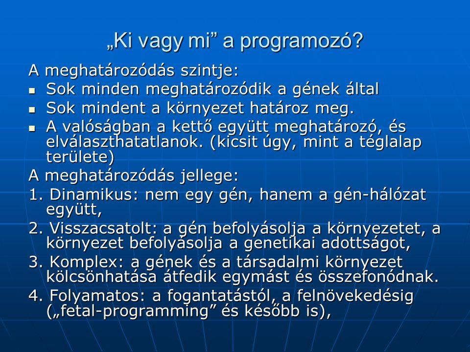 """""""Ki vagy mi a programozó."""