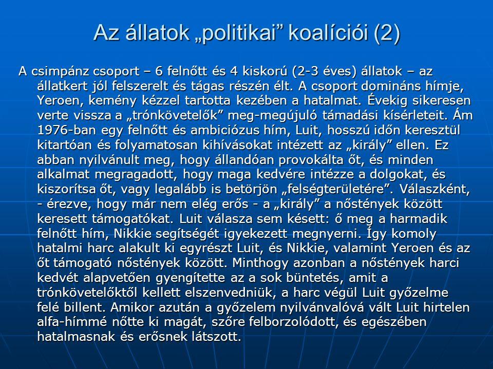 """A """"politikai állam szerepe az állatoknál (3) A meglehetősen nagy makákó csoportban néhány egyed gyakorolja a hatalmat, szinte rendőrként felügyelve a többieket."""