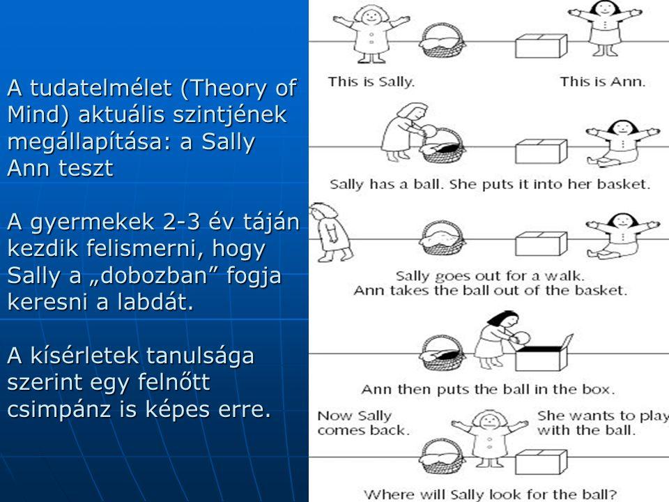 """A tudatelmélet (Theory of Mind) aktuális szintjének megállapítása: a Sally Ann teszt A gyermekek 2-3 év táján kezdik felismerni, hogy Sally a """"dobozba"""