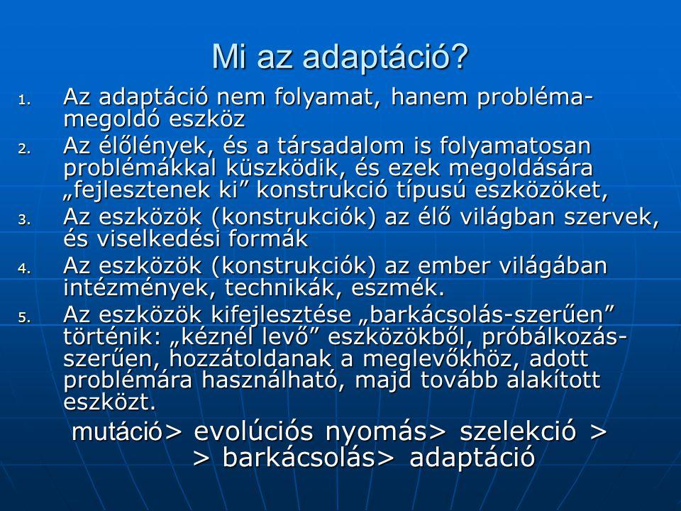 Mi az adaptáció? 1. Az adaptáció nem folyamat, hanem probléma- megoldó eszköz 2. Az élőlények, és a társadalom is folyamatosan problémákkal küszködik,