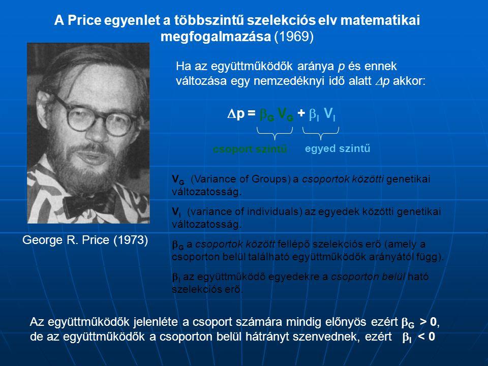 A Price egyenlet a többszintű szelekciós elv matematikai megfogalmazása (1969)  p =  G V G +  I V I Ha az együttműködők aránya p és ennek változása