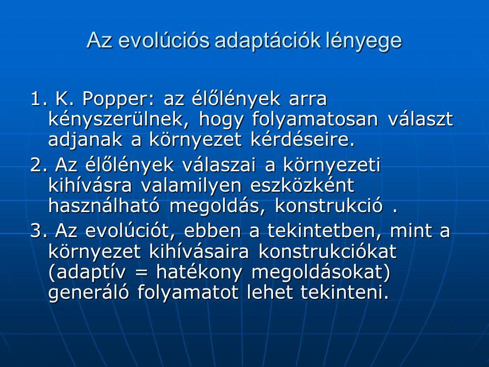 Az evolúciós adaptációk lényege 1. K. Popper: az élőlények arra kényszerülnek, hogy folyamatosan választ adjanak a környezet kérdéseire. 2. Az élőlény