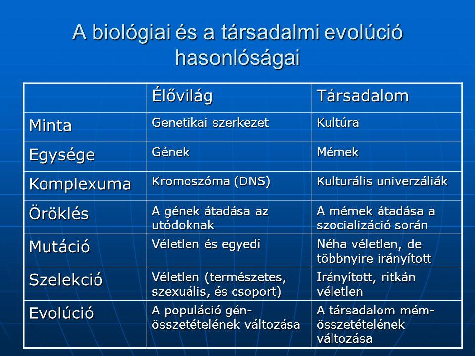 A biológiai és a társadalmi evolúció hasonlóságai ÉlővilágTársadalom Minta Genetikai szerkezet Kultúra EgységeGénekMémek Komplexuma Kromoszóma (DNS) K