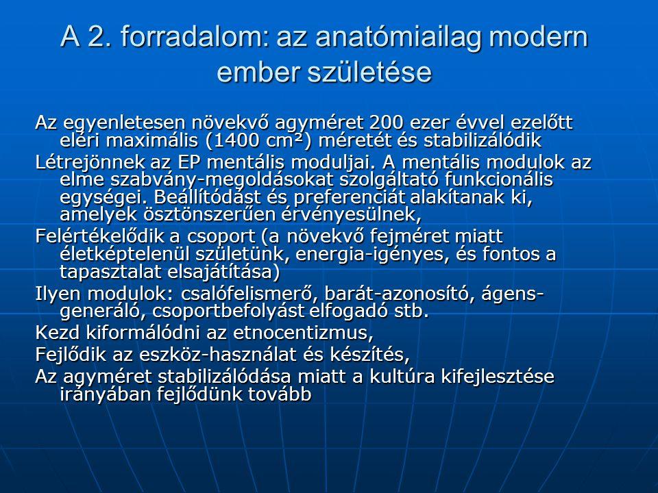 A 2. forradalom: az anatómiailag modern ember születése Az egyenletesen növekvő agyméret 200 ezer évvel ezelőtt eléri maximális (1400 cm²) méretét és