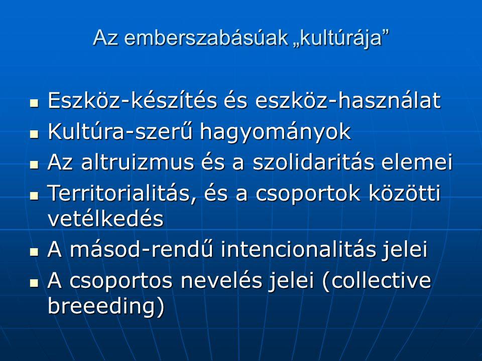 """Az emberszabásúak """"kultúrája Eszköz-készítés és eszköz-használat Eszköz-készítés és eszköz-használat Kultúra-szerű hagyományok Kultúra-szerű hagyományok Az altruizmus és a szolidaritás elemei Az altruizmus és a szolidaritás elemei Territorialitás, és a csoportok közötti vetélkedés Territorialitás, és a csoportok közötti vetélkedés A másod-rendű intencionalitás jelei A másod-rendű intencionalitás jelei A csoportos nevelés jelei (collective breeeding) A csoportos nevelés jelei (collective breeeding)"""