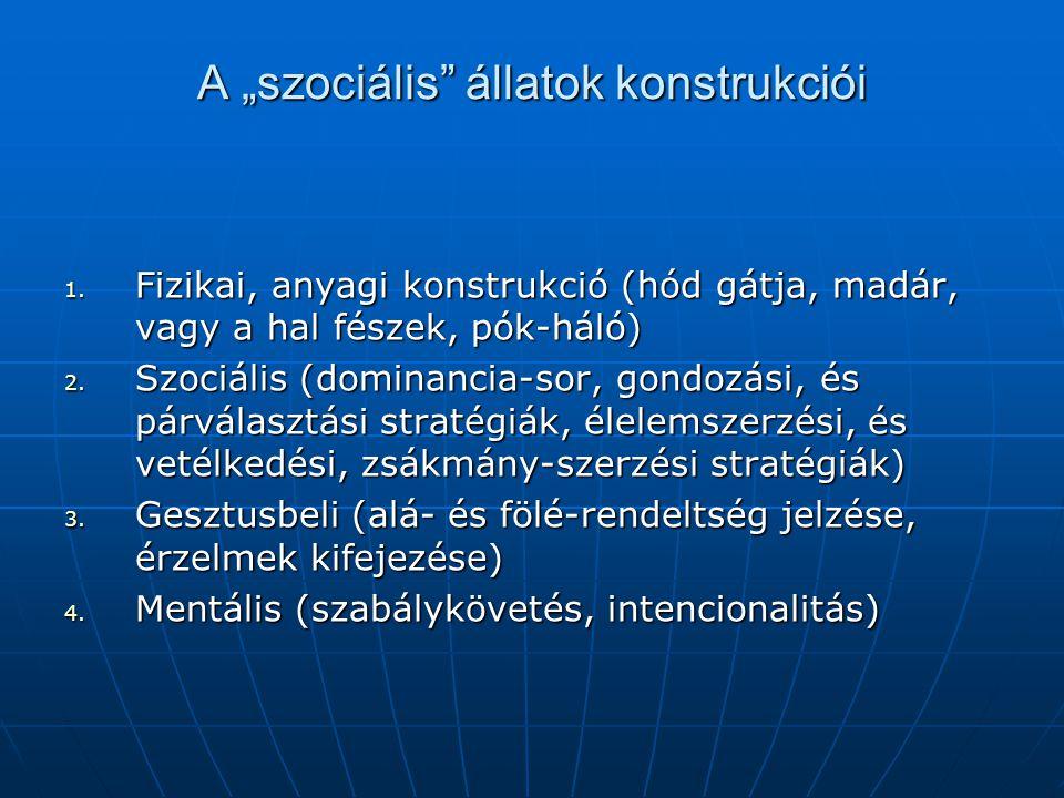 """A """"szociális állatok konstrukciói 1."""