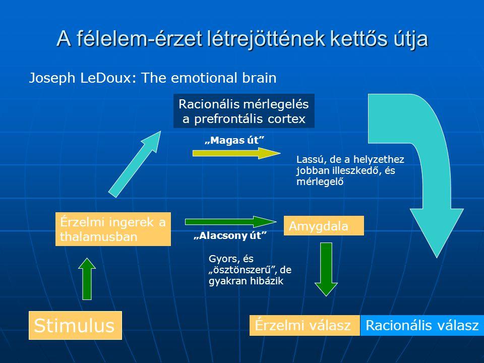 """A félelem-érzet létrejöttének kettős útja Joseph LeDoux: The emotional brain Stimulus Érzelmi válasz Érzelmi ingerek a thalamusban Amygdala Racionális mérlegelés a prefrontális cortex """"Alacsony út """"Magas út Gyors, és """"ösztönszerű , de gyakran hibázik Lassú, de a helyzethez jobban illeszkedő, és mérlegelő Racionális válasz"""
