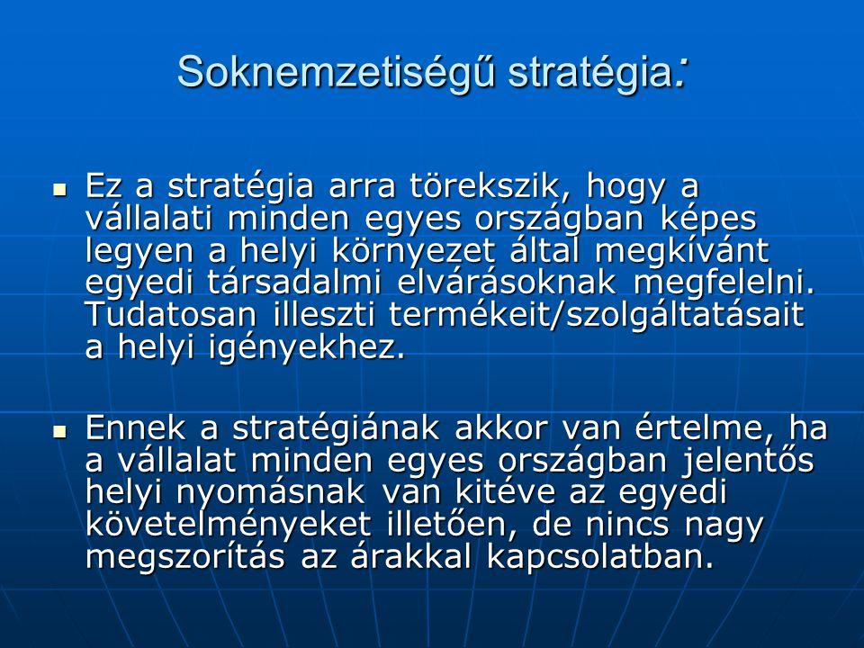 Soknemzetiségű stratégia : Ez a stratégia arra törekszik, hogy a vállalati minden egyes országban képes legyen a helyi környezet által megkívánt egyedi társadalmi elvárásoknak megfelelni.