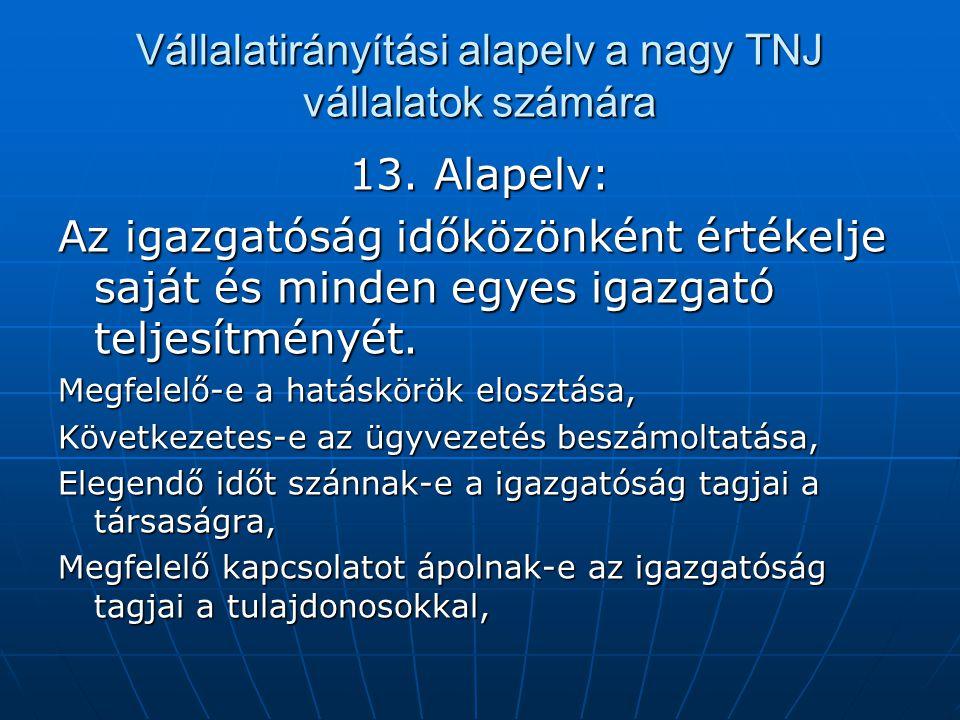 Vállalatirányítási alapelv a nagy TNJ vállalatok számára 13. Alapelv: Az igazgatóság időközönként értékelje saját és minden egyes igazgató teljesítmén