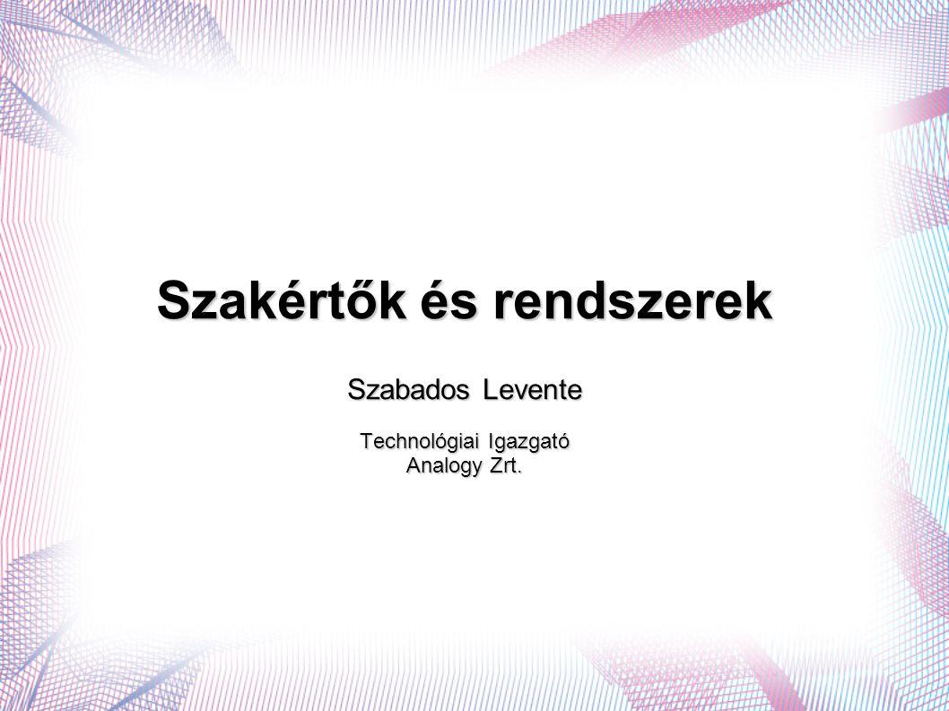 Szakértők és rendszerek Szabados Levente Technológiai Igazgató Analogy Zrt.