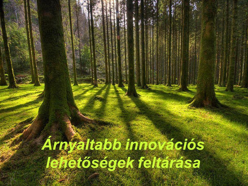 Árnyaltabb innovációs lehetőségek feltárása
