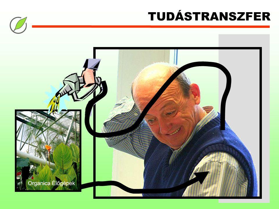 TUDÁSTRANSZFER