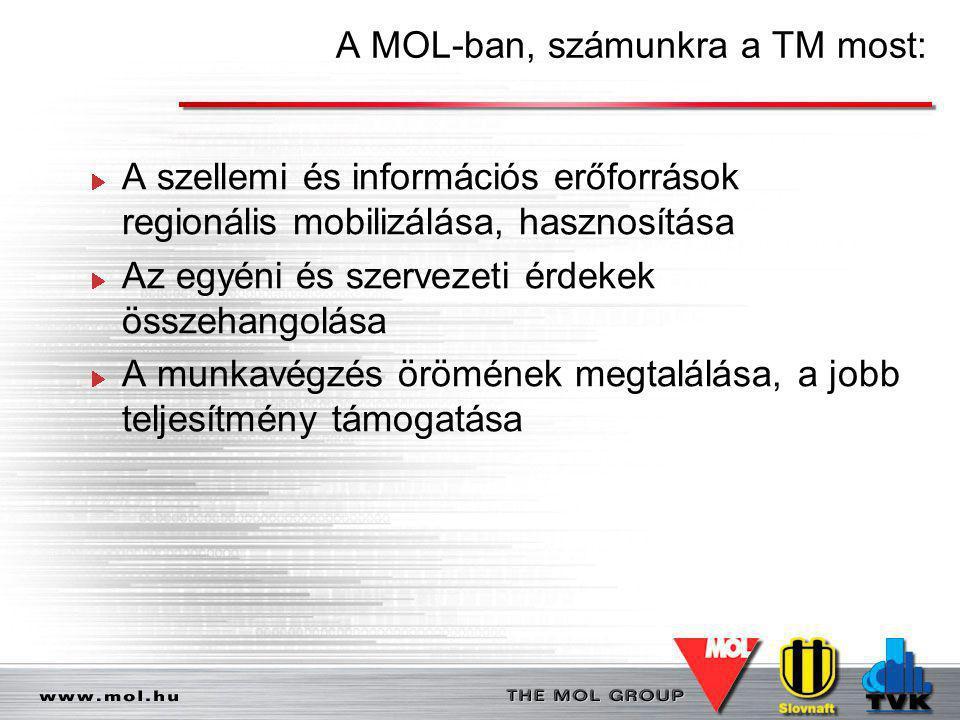 A MOL-ban, számunkra a TM most: A szellemi és információs erőforrások regionális mobilizálása, hasznosítása Az egyéni és szervezeti érdekek összehango